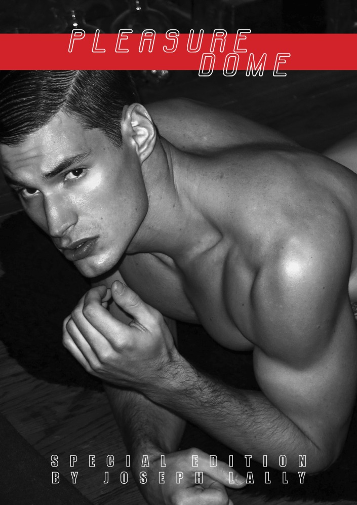 2-pleasure-dome-yearbook-fanzine-exclusive-by-joseph-lally-back
